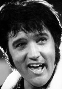 Elvis - Zoey (731)2